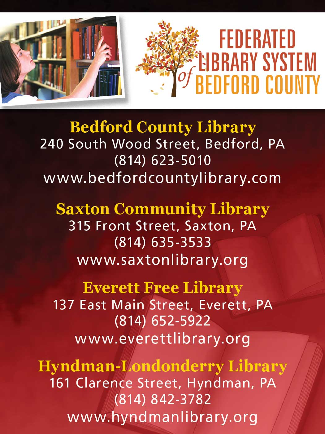 """<center>Federated Library System of Bedford County   <b><a href=""""http://www.bedfordcountylibrary.com"""" target=""""_blank"""" rel=""""noopener noreferrer"""">View the website</a></b> • Saxton Community Library   <b><a href=""""https://saxtonlibrary.org"""" target=""""_blank"""" rel=""""noopener noreferrer"""">View the website</a></b> • Everett Free Library   <b><a href=""""http://www.everettlibrary.org"""" target=""""_blank"""" rel=""""noopener noreferrer"""">View the website</a></b> • Hyndman-Londonderry Library   <b><a href=""""https://www.hyndmanlibrary.org"""" target=""""_blank"""" rel=""""noopener noreferrer"""">View the website</a></b></center>"""